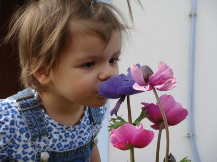 Odoressence.com senteurs