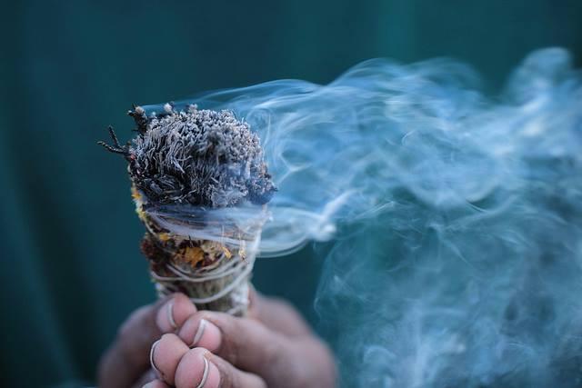 Percer les mystère de l'odorat
